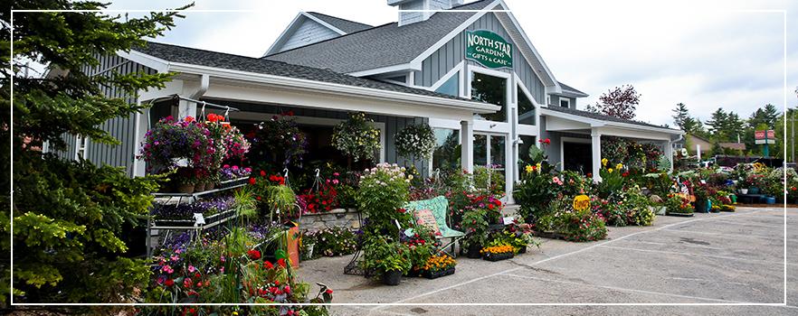 Garden Center And Landscpaing North Star Gardens